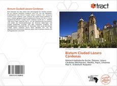 Portada del libro de Bistum Ciudad Lázaro Cárdenas
