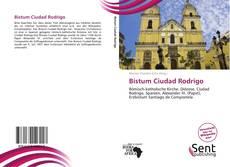 Bookcover of Bistum Ciudad Rodrigo