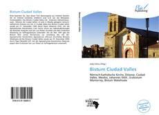 Capa do livro de Bistum Ciudad Valles