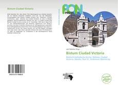 Buchcover von Bistum Ciudad Victoria