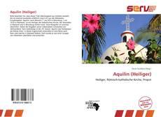Portada del libro de Aquilin (Heiliger)