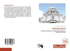 Buchcover von Aquipendium