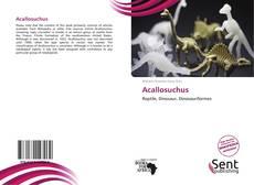 Couverture de Acallosuchus