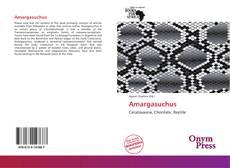 Amargasuchus的封面