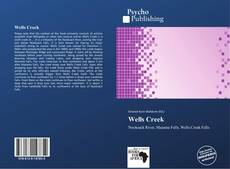 Bookcover of Wells Creek