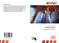Обложка Bretesuchus