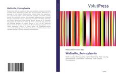 Bookcover of Wellsville, Pennsylvania