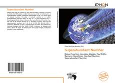 Copertina di Superabundant Number