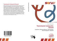 Bookcover of Temistocle Calzecchi-Onesti