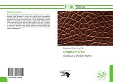 Dromomeron kitap kapağı