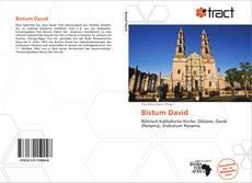 Bistum David的封面