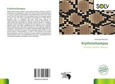 Обложка Erythrochampsa