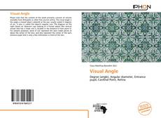 Bookcover of Visual Angle