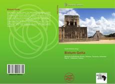 Bookcover of Bistum Geita