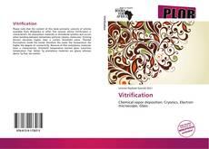 Bookcover of Vitrification