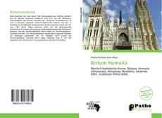Bookcover of Bistum Humaitá