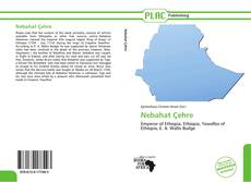 Nebahat Çehre的封面