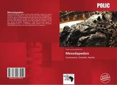 Mesodapedon kitap kapağı