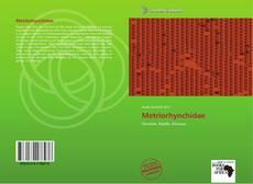 Обложка Metriorhynchidae