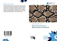 Обложка Metriorhynchinae