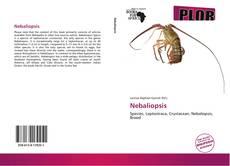 Bookcover of Nebaliopsis
