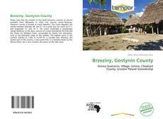 Copertina di Brzeziny, Gostynin County