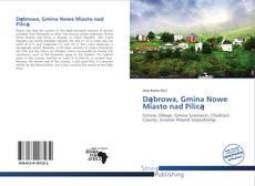 Dąbrowa, Gmina Nowe Miasto nad Pilicą kitap kapağı