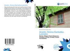 Copertina di Anielin, Gmina Garbatka-Letnisko