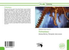 Capa do livro de Tichosteus