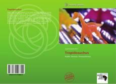 Capa do livro de Tropidosuchus