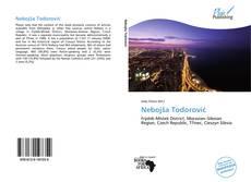 Borítókép a  Nebojša Todorović - hoz