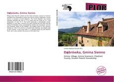 Copertina di Dąbrówka, Gmina Sienno