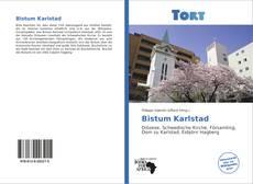 Bistum Karlstad kitap kapağı