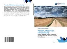 Обложка Amelin, Masovian Voivodeship