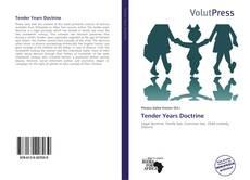 Tender Years Doctrine kitap kapağı