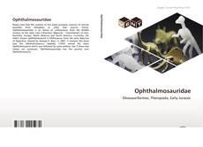 Copertina di Ophthalmosauridae