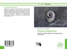 Bookcover of Viviparus Quadratus