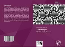Borítókép a  Stormbergia - hoz