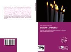 Buchcover von Bistum Leitmeritz