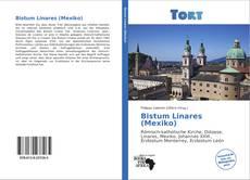 Buchcover von Bistum Linares (Mexiko)