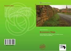 Bookcover of Brzozowo-Maje