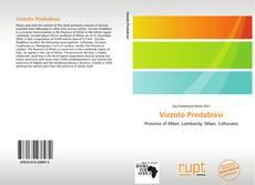 Copertina di Vizzolo Predabissi