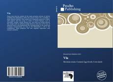 Vla kitap kapağı