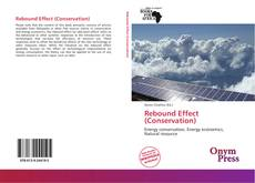 Bookcover of Rebound Effect (Conservation)