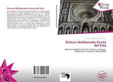 Portada del libro de Bistum Maldonado-Punta del Este