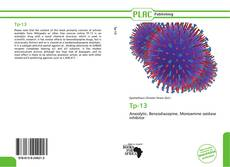 Bookcover of Tp-13