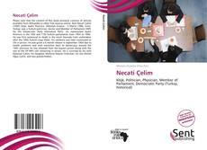 Bookcover of Necati Çelim