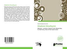 Bookcover of Vladimir Druzhynin