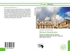 Portada del libro de Bistum Quelimane