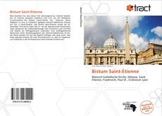 Bookcover of Bistum Saint-Étienne